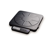 Royal Digital Shipping Scale (EX100W)