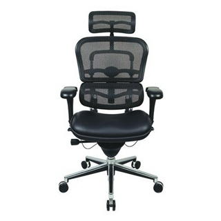 Eurotech Ergohuman Mesh Chair w/Leather Seat and Headrest
